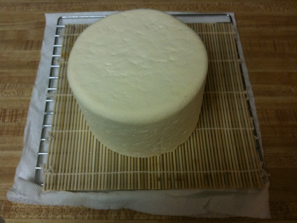 picture: farmhouse cheddar cheese